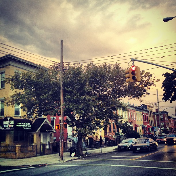 brooklyn, new-york, bushwick, zelda-and-scout, jennifer-harlan, jen-harlan