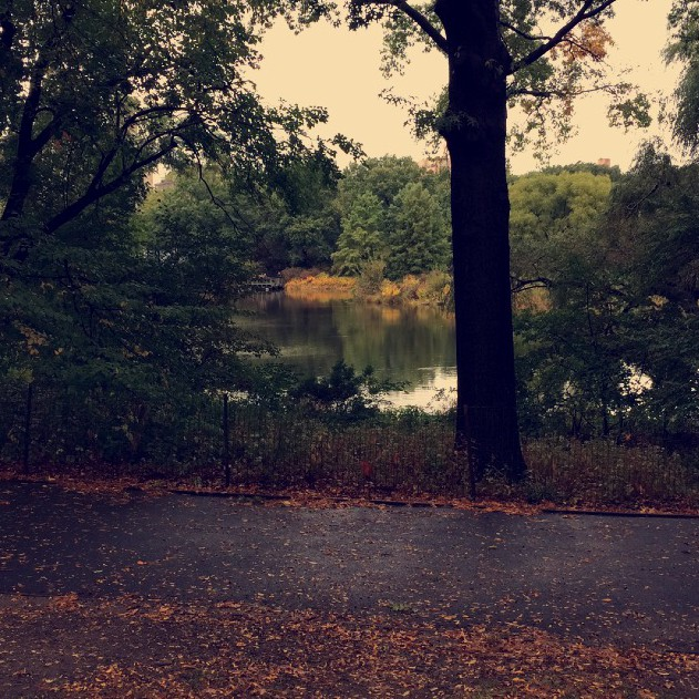 new-york, fall, central-park