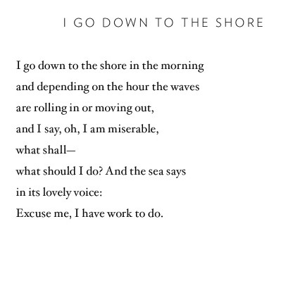From A Thousand Mornings (via Pinterest)