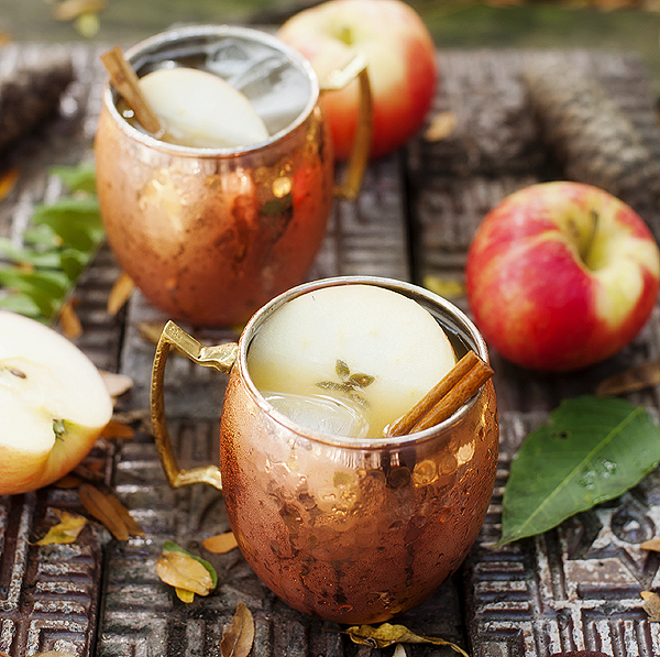 apple_cider_moscow_mule_2